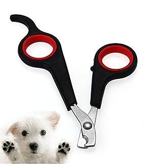 Fulfilling life 1 Pcs Pet Nail Trimmer Pet Nail Clipper Claw Cutter Dog Rabbit Bird Animal Scissor Toe File Nail… 1