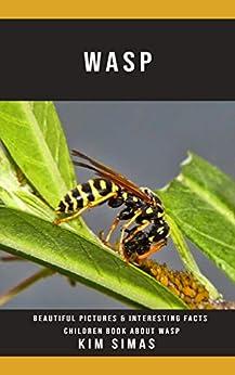 Wasp: Beautiful Pictures & Interesting Facts Children Book About Wasp Epub Descargar Gratis