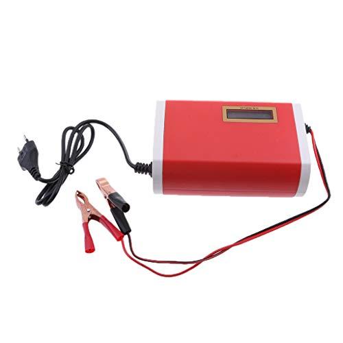 12V 6A Batterieladegerät Autobatterie Ladegerät für Motorrad und KFZ mit LED Bildschirm(Ladezustand), Batterieschutz