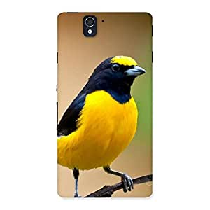 Sweet Bird Back Case Cover for Sony Xperia Z