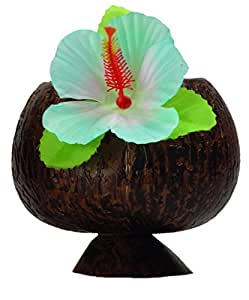 Boland 52374 Coconut Cup Hawaii, couleurs assorties