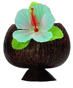 Boland Taza de Coco Hawaii, Surtido Varios Colores (Boland 52374 )