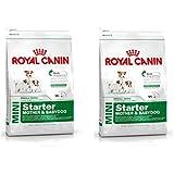 Royal Canin Mini Starter Dog Food 1Kg (Pack Of 2)