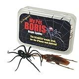 My Pet Boris Magische Spinne Pro Packung