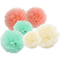 12pcs Mint Cream Peach Hanging Tissue Paper Pom Poms 10inch 8inch Tissue Paper Flowers Tissue Ball Paper Flower Pom Baby Shower Decorations Wedding Decorations Photo Backdrop by Furuix