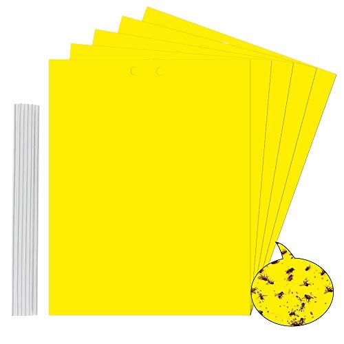 buzifu 20 pezzi trappole adesive per mosche grande size trappole per insetti volanti, biadesivo trappole ecologiche per insetti, trappole appiccicose per parassiti delle piante (20 * 25cm)
