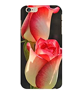 ColourCraft Lovely Flowers Design Back Case Cover for APPLE IPHONE 6 PLUS