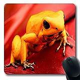 Luancrop Tappetini per Il Mouse Foresta Arancia Veleno Freccetta Rana Fillobati Anfibina Terribilis Anfibio mortale Giallo Design Antiscivolo Tappetino per Mouse Tappetino in Gomma