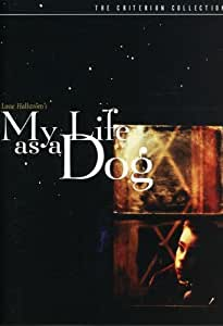 My Life as a Dog (Mitt liv som hund) - Criterion Collection [Import USA Zone 1]