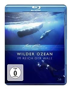 Wilder Ozean - Im Reich der Wale [Blu-ray]
