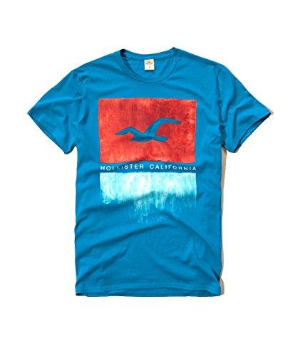 hollister-para-hombre-graphic-logo-t-shirt