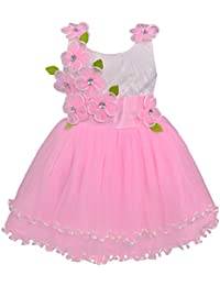 Wish Karo Baby Girls Party Wear Frock Dress DN (fr195bpnknw)