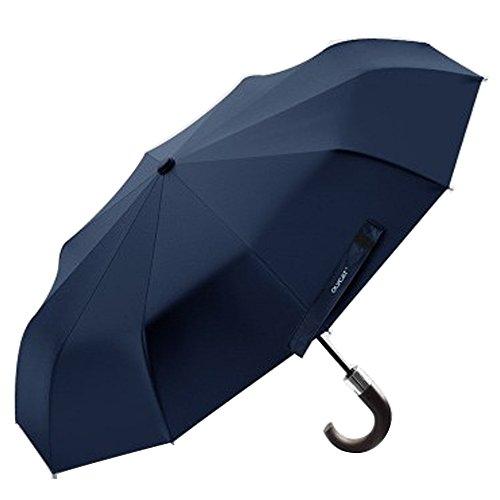 XLORDX Luxus Business Herren Regenschirm Taschenschirm mit automatischem Knopf, 10 verstärkten Rippen, winddicht, leicht & kompakt, Blau