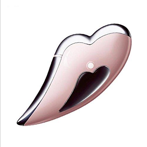 ZXLIFE@Beauty Instrument ® Scraping Ion Import und Export Instrument Haushaltsreinigung Instrument, um die kompakte Schönheit Ausrüstung zu heben , a
