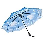 siamo certi della qualità del nostro ombrello. Poiché siamo i produttori diretti, possiamo garantirne la qualità.Modo d'uso:   Tenere l'ombrello per il manico e trovare il pulsante.  Premere il pulsante per aprire l'ombrello automaticamente....