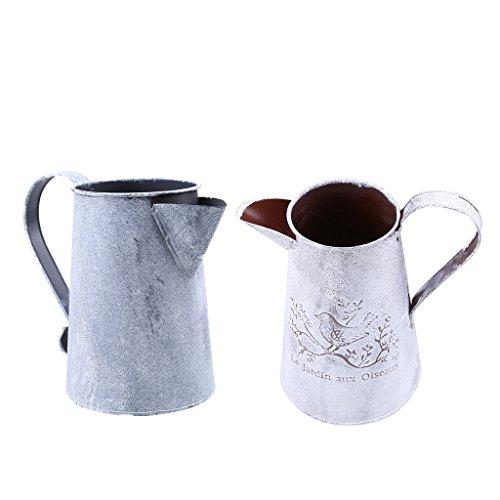 Sharplace 2er-Set Metall Blumenvase Wasserkrug/Eimer Vase Vintage Deko für Garten