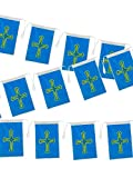 DISBACANAL Bandera plástico Asturias