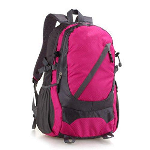 25L Outdoor Sport Bergsteigen Tasche Leicht Reise Rucksack Purple