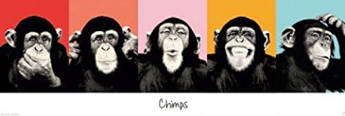 1art1 60482 Singes Poster de Porte Chimpanzés Expressifs 158 x 53 cm