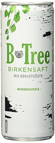 B-Tree Birkensaft, 12er Pack (12 x 250 ml)