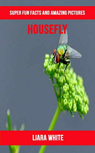 Descargar PDF Housefly: Super Fun Facts And Amazing Pictures