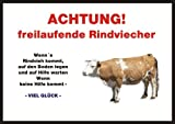 INDIGOS UG - Achtung/Fun Schild - Kalb, Kuh, Kühe, Rind Türschild Türschild A5 ca. 21x15 cm 3mm PVC - Türschild für Käfig, Zwinger, Haustier, Tür, Tier, Aquarium