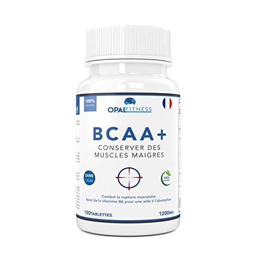 BCAA | Comprimés de BCAA | Acides aminés à chaîne ramifiée 1200mg | BCAA+ avec ajout de vitamine B6 pour améliorer l'absorption | Leucine, Isoleucine Et Valine dans un ratio optimal de 2 1 1 | Comprimés d'acides aminés (pas en capsules) | Convient aux hommes et aux femmes | Produit du Royaume-Uni et certifié GMP | Nutrition OSHUNsport | Offre de lancement limitée