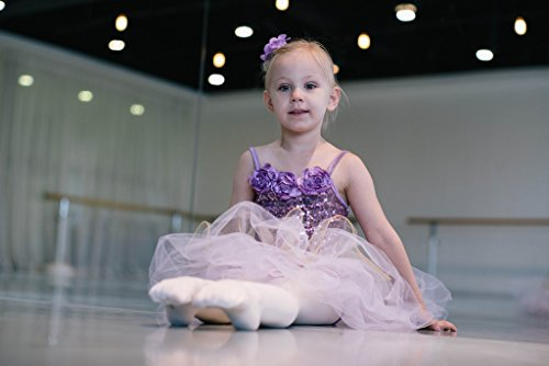 Pegasus galaxy Girl 's Tüll Ballett Dance Kostüm Tutu Kleid niedliche und schöne, Violett (Tutu Niedliche Kostüme)