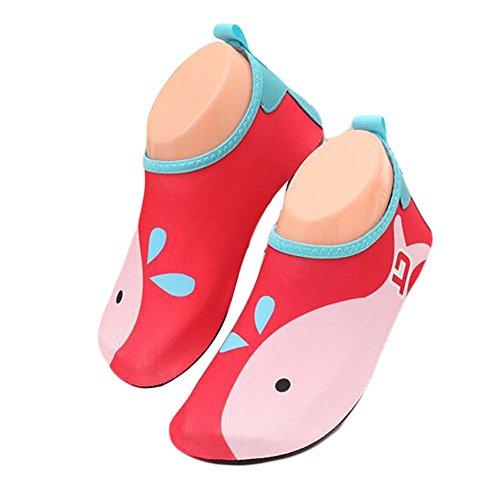 enfants Chaussures de plage de sport Chaussures d'eau douce Chaussures Indoor Sock Chaussures Rouge / Rose