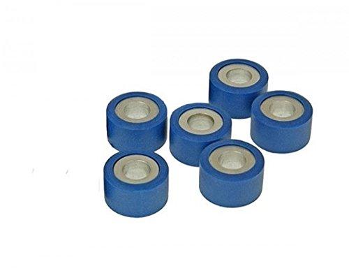 Variomatik Rollen Gewichte 6 Stück 19 x 15 5 mm 5,0 g