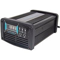 Sistema automático de voltaje de 36 V/48 V 20 A switchable Cargador de batería