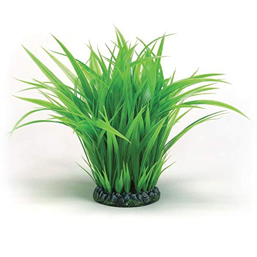 OASE biOrb Grasring groß, grün