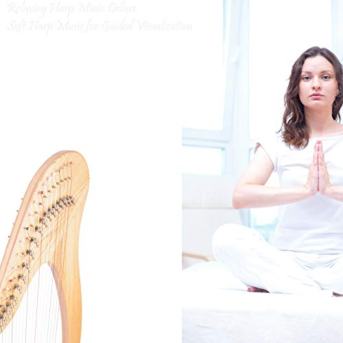 Elegant Moment for Quiet Guided Visualization