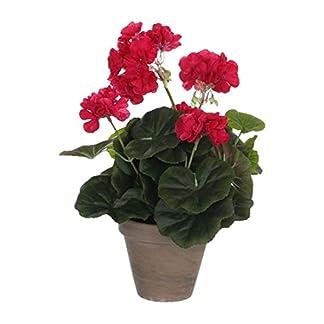 MICA Decorations 975166Flores, Geranium Grandes, Color Rosa