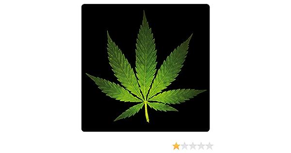 1art1 Cannabis Hanf Blatt Poster Sticker Tattoo Aufkleber 9 X 9 Cm Küche Haushalt