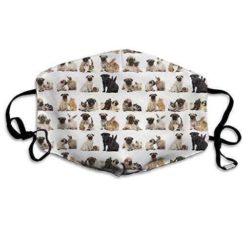 Pug Poster Unisex Anti-dust Solid Cotton Earloop Face Mouth Mask Muffle