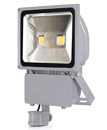 Leetop 10W Warm White Led Floodlight with PIR Motion Sensor10W 20W 30W 50W 100W blanc froid, blanc chaud Projecteur AC 85-265 V étanche Projecteur LED induction Sense lampe(100W blanc froid)