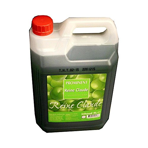 Preisvergleich Produktbild Prominent Siroop Reine Claude 5l Kanister (Getränke-Sirup, Edel-Pflaume)