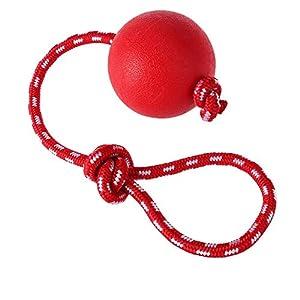 Anruo Chiens Jouets à MâCher Ballon Avec Corde,Animal De Compagnie Interactif Caoutchouc Ballon Lanceur Pour Chiens En Jouant EntraîNement Faire De L'Exercice