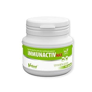 Vetfood Immunactiv Max, 90 Kapseln