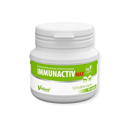 Vetfood Immunactiv Max | Stärkt das Immunsystem von Katzen und Hunden| Nach Antibiotika | Bei Stress | Für große Hunde | 90 Kapseln