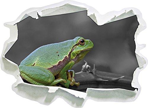 piccola rana su Dornenast nero / bianco, carta da parati 3D formato adesivo: 92x67 cm decorazione della parete 3D Wall Stickers parete decalcomanie