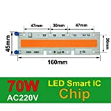 70W 160x45mm, 380-840nm : COB LED Chip Phyto Lamp Full Spectrum 20W 30W 50W LED Diode Grow Lights fitolampy for Seedlings Indoor DIY Hydroponics 110V 220V