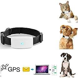 GPS tracker chat chien TKSTAR Mini traceurs GPS anti-perte suivi en temps réel pour petit chat chien enfants parents avec un col TK911