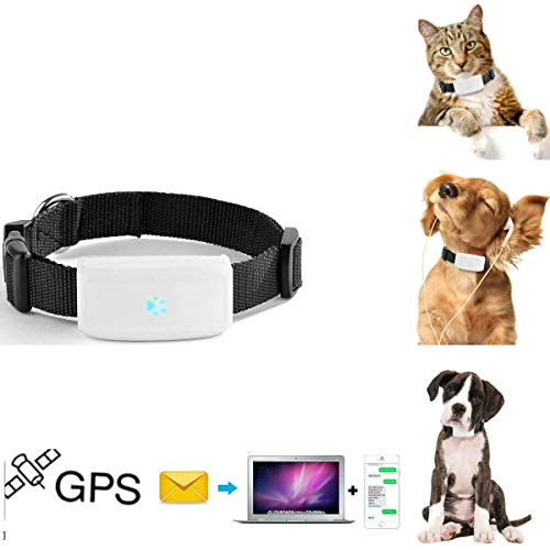 GPS tracker chat chien TKSTAR Mini traceurs GPS anti-perte...