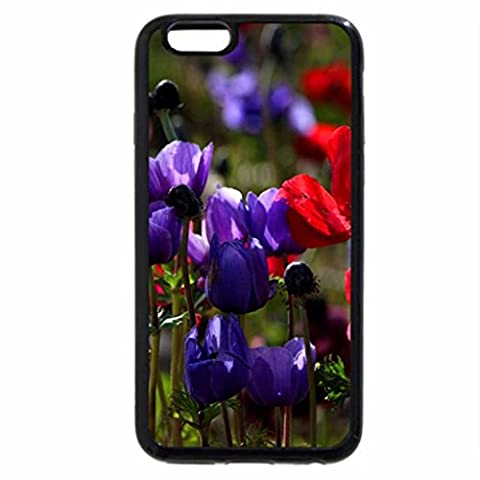 iPhone 6S / iPhone 6 Case (Black) Colorful Flowers a garden makeup 01