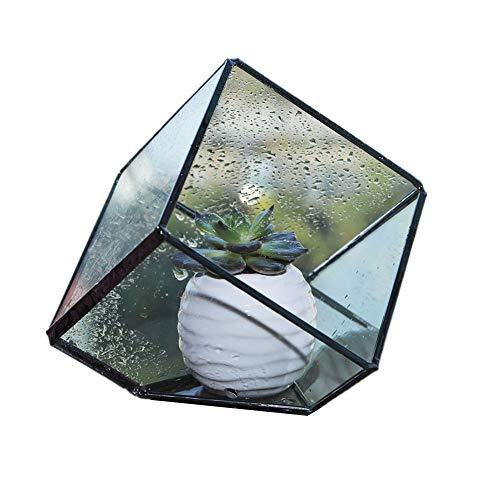 Mr.Fragile 15 cm Höhe Unregelmäßiges Prisma Glas Geometrische Terrarium Tabletop Box, Blume Pflanzer Große Hoch für Sukkulente Fern Moos - Fragile Glas