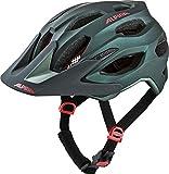 Alpina Unisex– Erwachsene Carapax 2.0 Fahrradhelm
