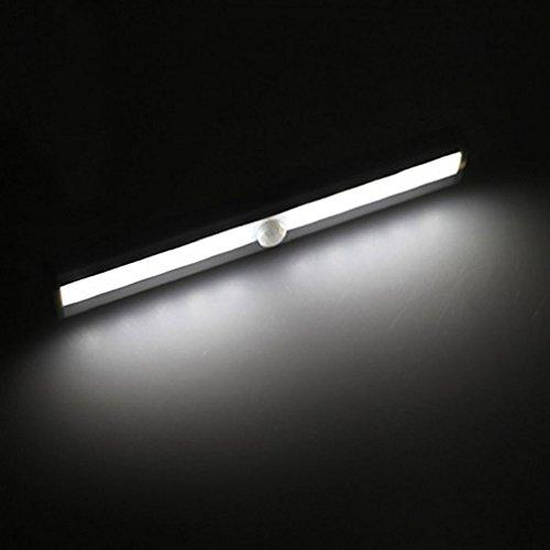 Alcyoneus Nachtlicht mit Bewegungsmelder, 10 LEDs, kabellos cool white (Led Road Off Strobe Lichtleiste)