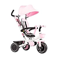 Wgw Adjustable Trike, Recreational with Push Handle with Push Handle with Push Handle Outdoor Child Foldable Tricycles (Color : Pink)